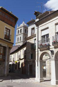 Dueñas. Palencia. El Cerrato Castellano. Castilla y León. España © Javier Prieto Gallego