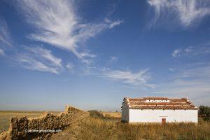 Palomar. Tamariz de Campos Provincia de Valladolid. Castilla y León. España. © Javier Prieto Gallego
